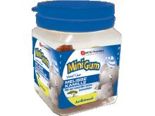Minigum Mélisse-Camomille